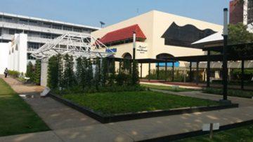 Landscape Of TU (Thammasat University, Tha Prachan Campus)